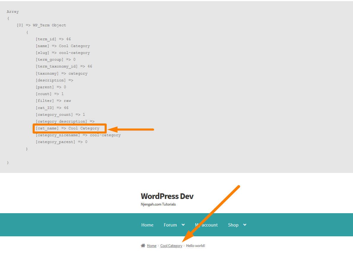 how to remove default sidebar in wordpress